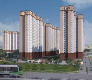 jindal-city Elevation
