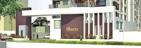 blazia Others