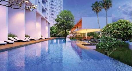 auris-serenity-tower-2 Swimming Pool