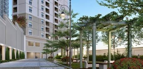 palacia Images for amenities