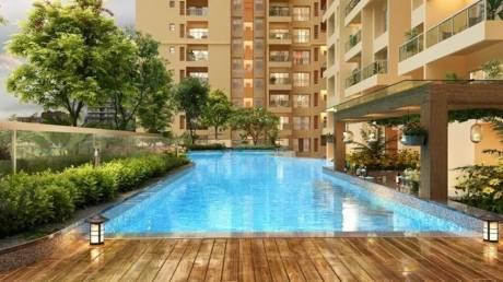 nesara-block-1 Swimming Pool