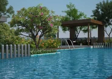 Excellaa Panama Park Amenities