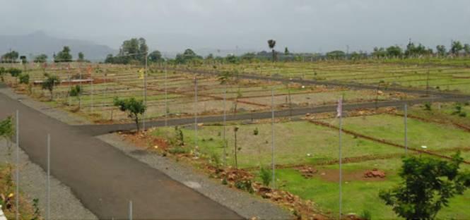 Kavuri Forest Nest Plots Elevation