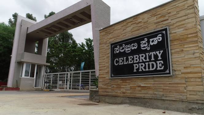 Celebrity Pride Access Elevation