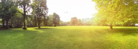gulmohar-park Plot