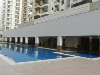 121-homes Swimming Pool