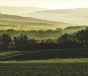swiss-county Elevation