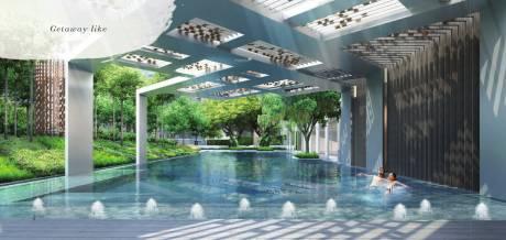 navyom-phase-i Swimming Pool