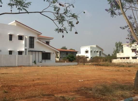 villa-vivianaa-plot Plot