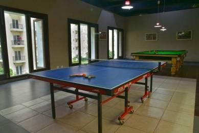 floraville Table Tennis