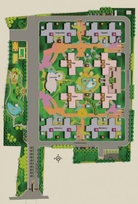 Eden Park Site Plan