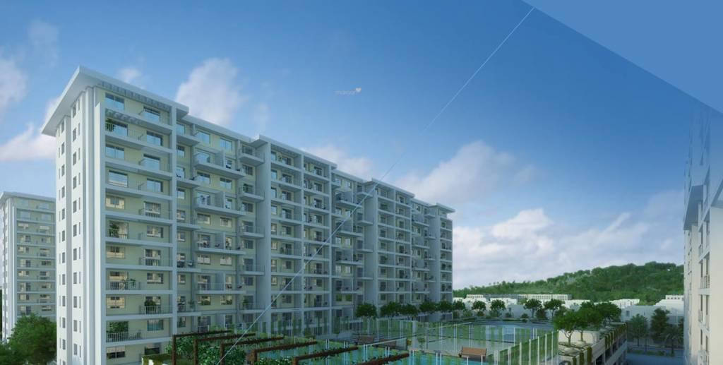 Kolte Patil IVY Apartments Elevation