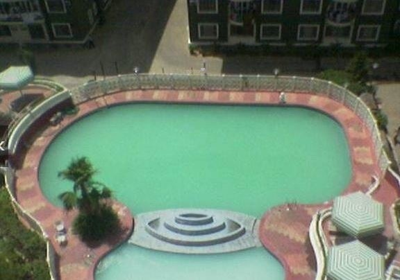 residency Swimming Pool