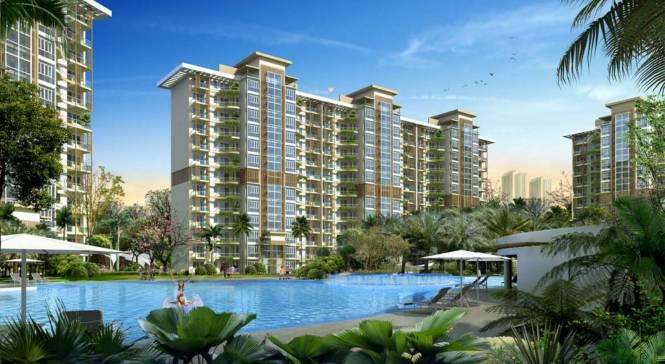 Emaar Palm Terraces Select Elevation