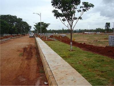 JR Meadows Construction Status