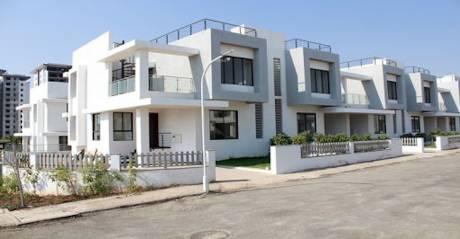 ivy-villa Elevation
