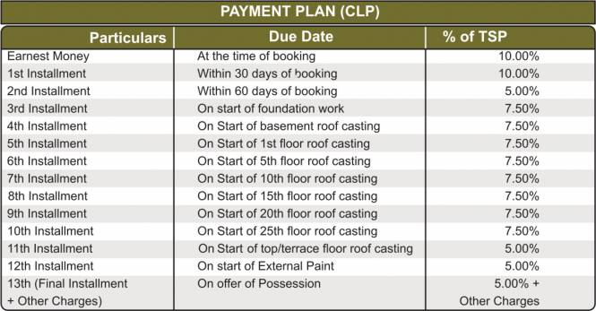 RG Luxury Homes Payment Plan