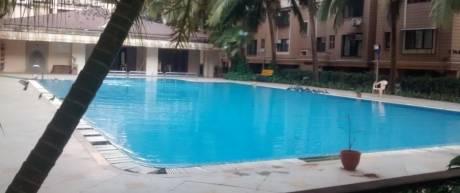 palm-spring Swimming Pool