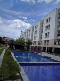 sukriti Swimming Pool