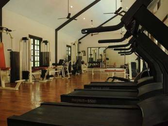 green-city Gymnasium
