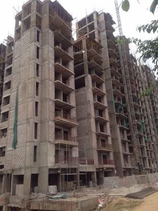 Oasis Venetia Heights Construction Status
