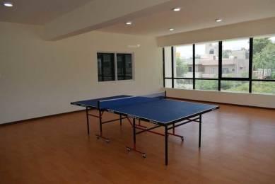springfields Table Tennis
