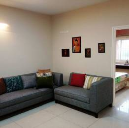 regent-park Living Area