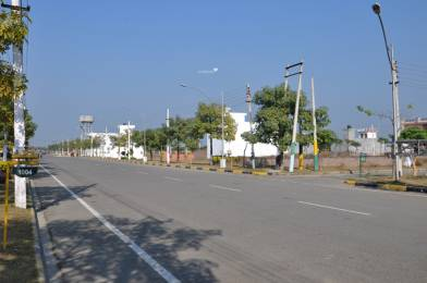 Amgeco Palm City Plots Main Other