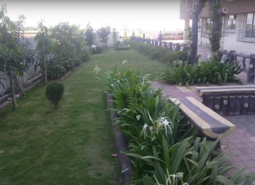 garden Others