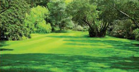 Mansani Thirumala Meadows Amenities