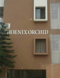 Phoenix Orchid Elevation