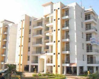 1035 sqft, 2 bhk Apartment in Builder PARKWOOD Sai Road, Baddi at Rs. 21.7500 Lacs