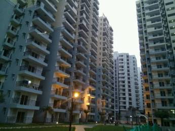 1195 sqft, 2 bhk Apartment in Builder galaxy Vega Noida Extension, Greater Noida at Rs. 36.0000 Lacs