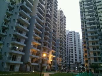 995 sqft, 2 bhk Apartment in Builder Galaxy Vega Noida Extn, Noida at Rs. 33.2000 Lacs