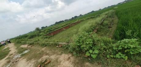 1360 sqft, Plot in Builder Project Rohaniya DLW Road, Varanasi at Rs. 13.0000 Lacs