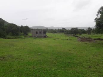 3000 sqft, Plot in Builder Project Revdanda Road, Alibaugh at Rs. 13.5000 Lacs