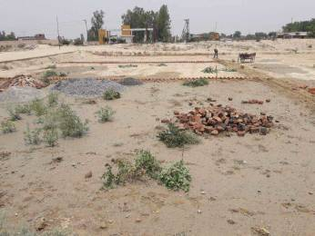 10000 sqft, Plot in Builder max amce residency Mohanlalganj, Lucknow at Rs. 79.9000 Lacs