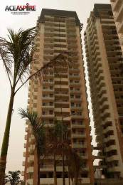 1125 sqft, 2 bhk Apartment in Ace Aspire Techzone 4, Greater Noida at Rs. 38.2365 Lacs