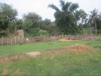 15660 sqft, Plot in Builder ISKCON Remuna Road, Balasore at Rs. 72.0000 Lacs