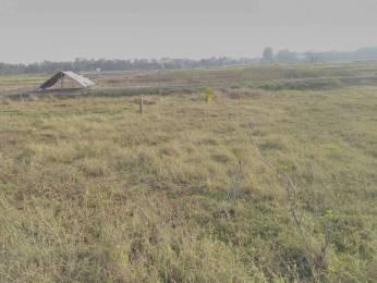 2880 sqft, Plot in Holyone Real Estate Southern Park Baruipur, Kolkata at Rs. 18.4000 Lacs