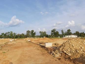 1163 sqft, Plot in Builder Nirmala Nagar Bogadi Road, Mysore at Rs. 16.7500 Lacs