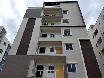 1700 sqft, 3 bhk Apartment in Builder Project Poranki, Vijayawada at Rs. 55.0000 Lacs