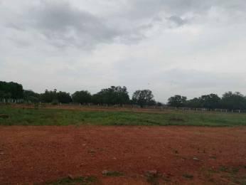 1503 sqft, Plot in Builder Project Hanuman Junction, Vijayawada at Rs. 14.1950 Lacs