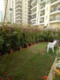 1676 sqft, 2 bhk Apartment in Central Park Central Park Belgravia Resort Residences 2 Sector 48, Gurgaon at Rs. 2.4000 Cr