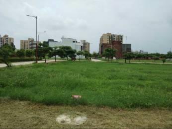 1206 sqft, Plot in  Town Modi Puram, Meerut at Rs. 30.8000 Lacs
