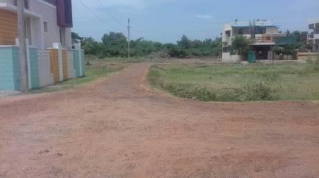 1500 sqft, Plot in Builder Nile nagar Sekkanganni Street, Thanjavur at Rs. 14.6250 Lacs