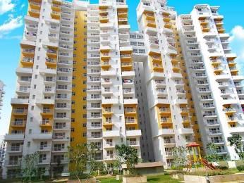 1305 sqft, 2 bhk Apartment in BPTP Princess Park Sector 86, Faridabad at Rs. 41.0000 Lacs