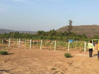 3229 sqft, Plot in Builder Alibaugh Open Plot Alibag Mumbai, Mumbai at Rs. 13.0000 Lacs