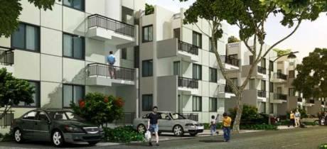 960 sqft, 2 bhk BuilderFloor in Vatika Emilia Floors Sector 82, Gurgaon at Rs. 65.0000 Lacs