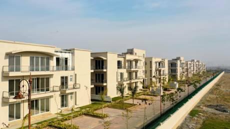 3560 sqft, 4 bhk BuilderFloor in BPTP Amstoria Country Floor Sector 102, Gurgaon at Rs. 1.8800 Cr